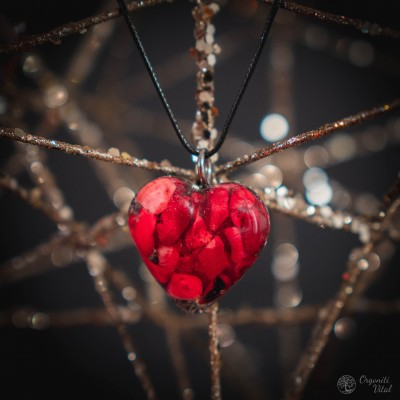 Corals - orgonite heart...